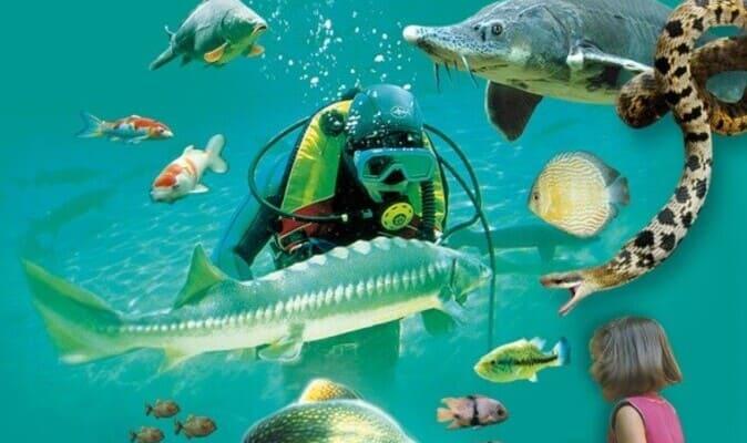 Aquarium Le Bugue